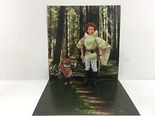 "Custom Star Wars Endor Forest Fond IKEA detolf Display 12"" Sideshow Hot Toys"