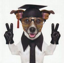 Pliante carte de luxe: Jack russel terrier Chico comme professeur