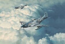 Looking for Trouble by Robert Taylor Aviation Art signed by eight Mustang Pilots