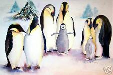 "6 cards ""Penguin Colony"", Birds,Marine,Animals, blank"