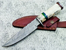 "Authentic HAND FORGED DAMASCUS BLADE 12"" HUNTING KNIFE - STAINED BONE TM-350"