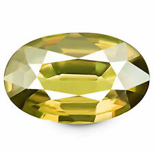 Oval Unheated Yellow Loose Natural Sapphires
