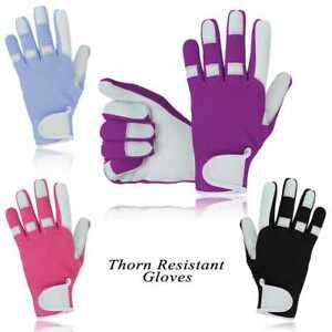 Thorn Proof Gardening Gloves Ladies ,Cut & Thorn Resistant Pruning Girls Work