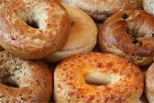 Donut & Bagel Shop Bakery How To Business MARKETING PLAN MS Word / Excel NEW!