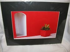 Signed Matted Photo Print- Red Architectural Scene - Costa Maya, Mexico; Zecher