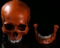Bronze Resin Replica  Human Skull Party Decor Props Toy 1:1 Life Size Head Model