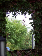 Garden Mirror Acrylic Sheet 3mm Thick - Create an Illusion - 600x300mm - Drilled