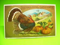 Thanksgiving Greetings Embossed Holiday Postcard 429 Turkey & Pumpkin Patch 1910