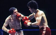 Salvador Sanchez vs Pat Cowdell 8X10 Photo Boxing Picture