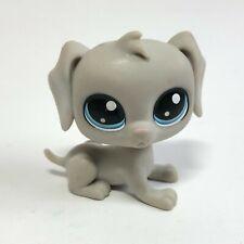 Authentic Hasbro Littlest Pet Shop Weimaraner Dog (#1-107) Toy Lps Bill Weimaran