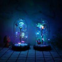 Eternal Rose LED light Dome Glass Lamp Home Decor Gift Valentine's Day Love Gift