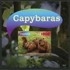 GUYANA   2016 CAPYBARAS THE WORLD'S LARGEST RODENT SOUVENIR  SHEET  MINT NH