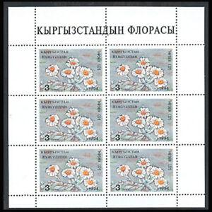 Kyrgyzstan, Sc #34a, MNH, 1994, S/S, Flowers, Flora, plant, AR5IHI-A