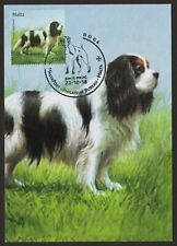 Cavalier King Charles Spaniel * Int'l Dog Postage Stamp Art *Great Gift Idea*