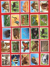 REWE WWF TIERABENTEUER - 30 STICKER aussuchen - freie Wahl aus fast allen
