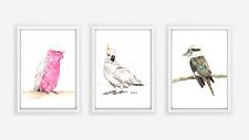 Set of Three Australian Bird Prints - cockatoo, galah, kookaburra, watercolour
