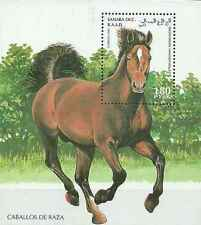Timbre Chevaux Sahara occidental ** lot 15543