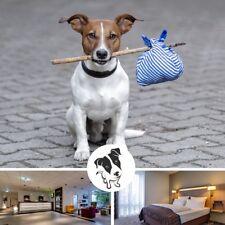 3 Tage Kurzreise Göttingen Harz & Weser mit Hund  4★ Hotel Park Inn Kurzurlaub