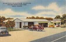 Largo Florida Orange Blossom Groves Street View Antique Postcard K26570