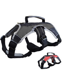 Dog Carry Harness Padded Vest Collar Heavy Duty Black XS