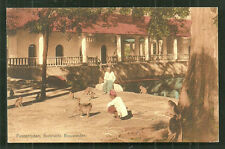 Pasoeroean Monkeys Bathing Place Java Indonesia stamp 1910