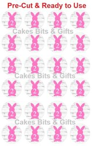 24x PINK BUNNY 2 Edible Wafer Cupcake Toppers PRE-CUT Ready to Use 2nd Birthday