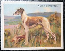 GREYHOUND    Original 1914 Vintage Illustrated Card  VGC