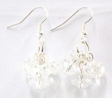Clear Crystal Glass Dropper Fashion Earrings