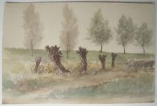 Belle AQUARELLE Ancienne Paysage Campagne Tronc Arbres 1920 Alsace Lorraine #4