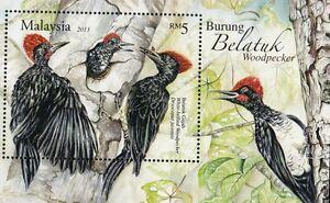 *FREE SHIP Woodpecker Malaysia 2013 Bird Wildlife Forest MS MNH *emboss *unusual