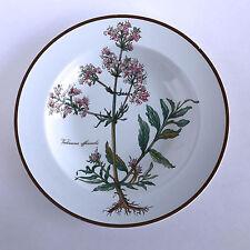 "Villeroy & Boch Botanica Salad Plate Imperfect Valeriana officinalis 8-3/4"""
