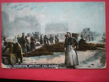 Brittany Unposted Collectable French Postcards