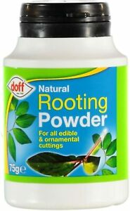 Doff Natural Hormone Rooting Powder 75g for Strong Healthy Plants ornamental cut