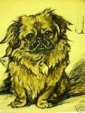 Lucy Dawson 1937 PEKINGESE PUPPY Dog Art Print Matted