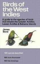 (Black and White) Birds of the West Indies: A Guide to the species of birds that