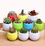 Colorful Mini pp resin plastic plant pot Flower Planter Handmade Garden Home