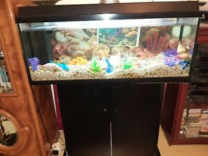 Fish Tank With Stand/Cupboard and ornaments included!