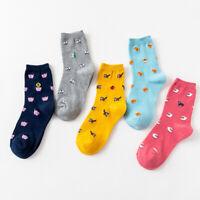 Cartoon Bird Panda Animal Cotton Socks Casual Women Socks Winter Autumn Sock