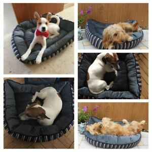 Bed Pet Face Luxury Puppy Basket Thick Warm Velvet Chew proof Cushion Bed house
