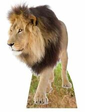 LION - LIFESIZE CARDBOARD CUTOUT / STANDEE Standup zoo animal big cat