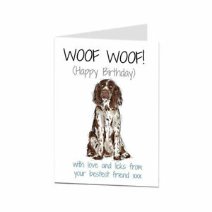 Springer Spaniel Birthday Card From The Dog For The Owner & Lover