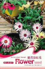 Other Plants, Seeds & Bulbs