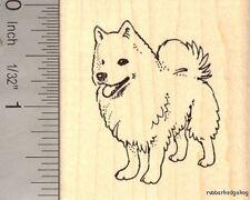 American Eskimo Dog Rubber Stamp H14005 WM