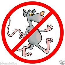 NO RATS WALKING IN (LOT OF 3) STICKER HARD HAT STICKER HELMET STICKER LAPTOP