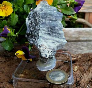 Wassersaphir Iolith Cordierit Anschliff Norwegen Heilstein Angst Depression 86g
