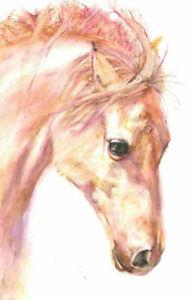 Fine Art Print of WHITE HORSE original watercolour by HELEN APRIL ROSE   622