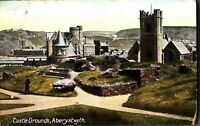 Castle Grounds Aberystwyth postcard antique Wales colour printed