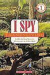 I SPY Thanksgiving (Brand New Paperback Version) Jean Marzollo