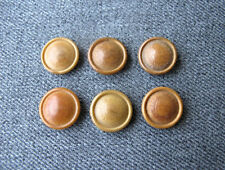 6 ANTIQUE EARLY 1900 DECORATED WITH A SHIELD TAGUA NUT MILITARY BUTTONS  #A