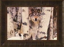 MOUNTAIN RANGER by Art Wolfe 17x23 FRAMED PRINT PICTURE Wolf Wolves Snow Winter